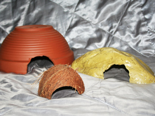A range of hides that are suitable for use with your Corn Snake